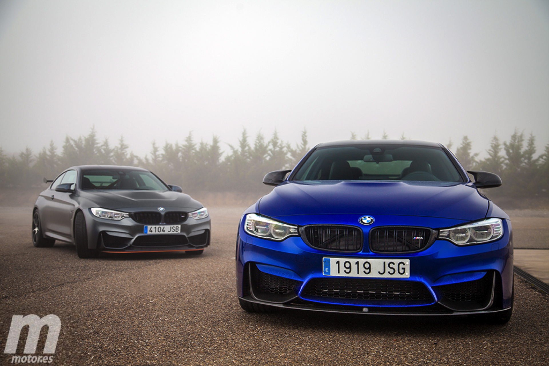 Bmw M4 Gts Vs Bmw M4 Competition Sport Quale La Migliore Bmwpassion Blog